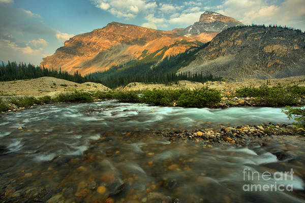 Photograph - Bow Glacier Stream At Sunset by Adam Jewell