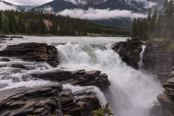 Photograph - Bow River by John Johnson