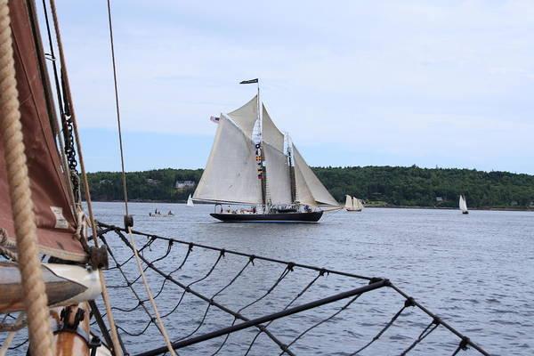 Bowditch Under Full Sail Art Print