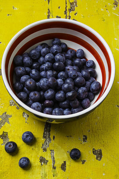 Blue Berry Photograph - Bowl Full Of Blue Berries by Garry Gay