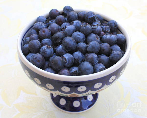 Photograph - Bowl Of Blueberries by Carol Groenen