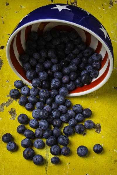 Blue Berry Photograph - Bowl Pouring Out Blueberries by Garry Gay