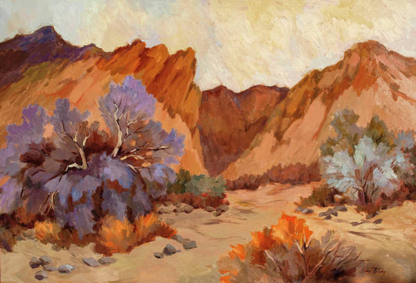 Desert Scene Painting - Box Canyon by Diane McClary
