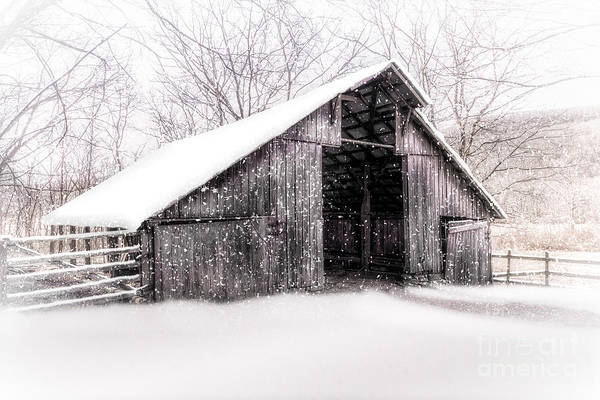 Photograph - Boxley Snow Barn by Larry McMahon