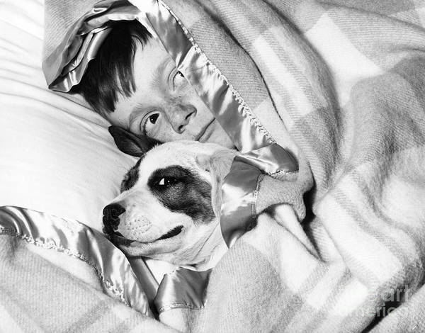 Naughty Dog Wall Art - Photograph - Boy And Dog Hiding Under Blanket by D. Corson/ClassicStock