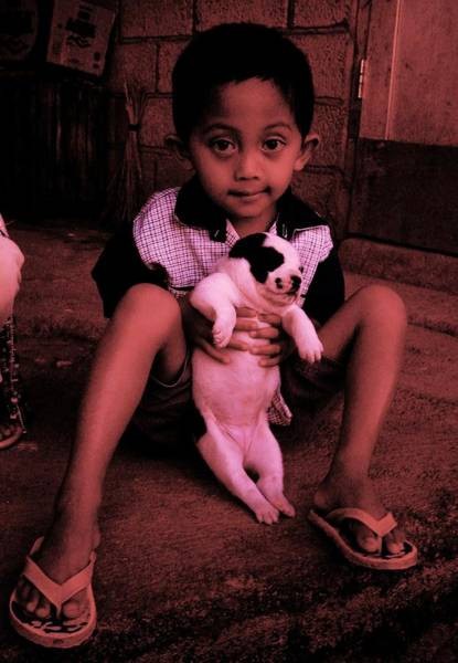 Photograph - Boy And Puppy by HweeYen Ong