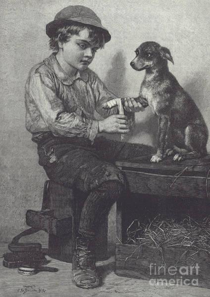 Wall Art - Drawing - Boy Mends Dog's Leg by British School