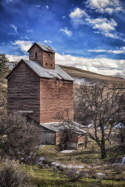 Photograph - Boyd Flour Mill by Cat Connor