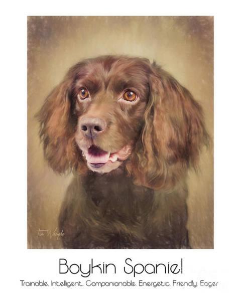 Boykin Spaniel Poster Art Print