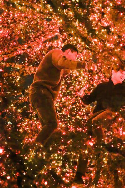 Photograph - Boys In The Christmas Tree 1 by Bonnie Follett