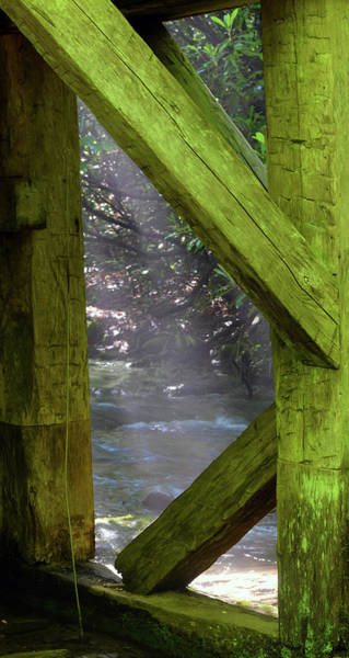 Millrace Wall Art - Photograph - Braced With Moss by Pat Turner
