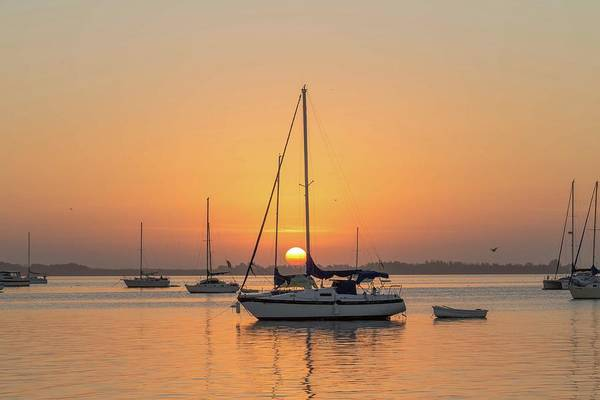 Photograph - Bradenton Sunrise by Paul Schultz