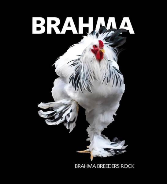 Digital Art - Brahma Breeders Rock T-shirt Print by Sigrid Van Dort