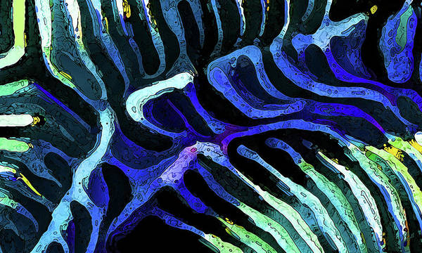 Photograph - Brain Coral Abstract 3 In Blue by ABeautifulSky Photography by Bill Caldwell