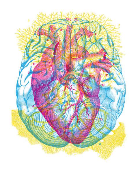 Circulation Wall Art - Painting - Brain Heart Circulation by Gary Grayson