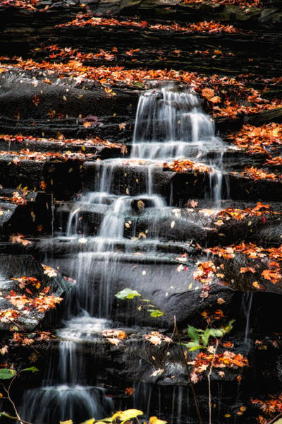 Wall Art - Photograph - Brandywine Falls In Autumn by Tom Mc Nemar