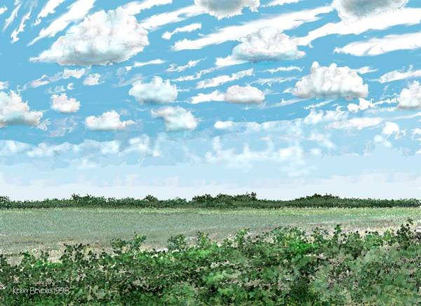 Brazoria County Field Art Print