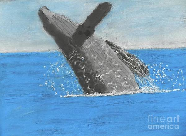 Wall Art - Painting - Breaching Humpback Whale by Pamela Meredith