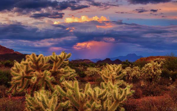 Photograph - Break In The Heat by Rick Furmanek