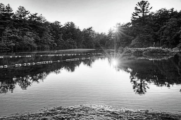 Photograph - Breakheart Reservation Sunset Saugus Ma Black And White by Toby McGuire