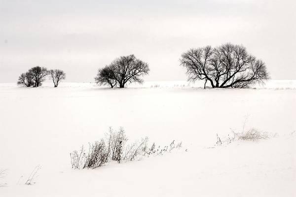 Photograph - Breaking Ground  by David Matthews