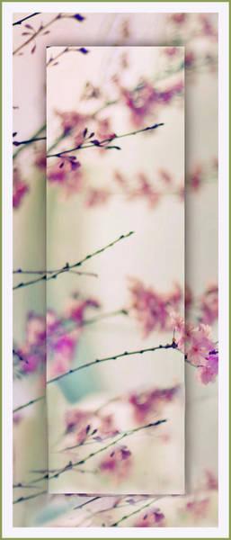Photograph - Breezy Blossom Panel by Jessica Jenney