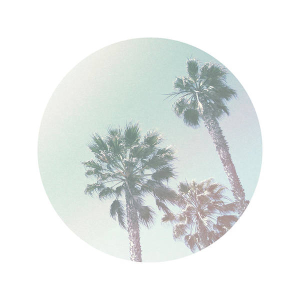 Faded Photograph - Breezy Palm Trees- Art By Linda Woods by Linda Woods