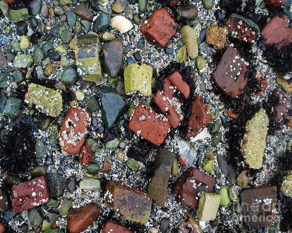 Photograph - Brick Beach by Bill Thomson