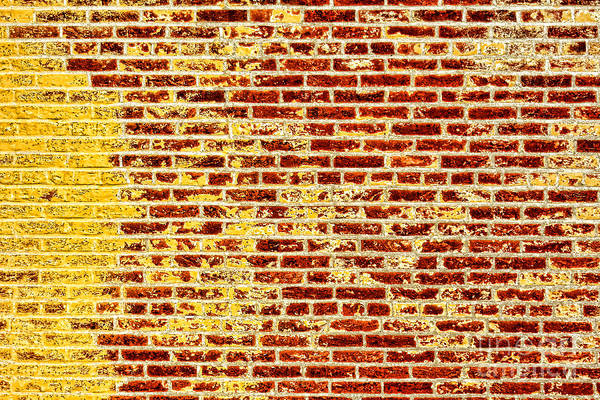 Wall Art - Photograph - Brick Flag by Olivier Le Queinec