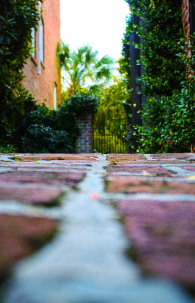 Photograph - Brick Path by Stacey Rosebrock