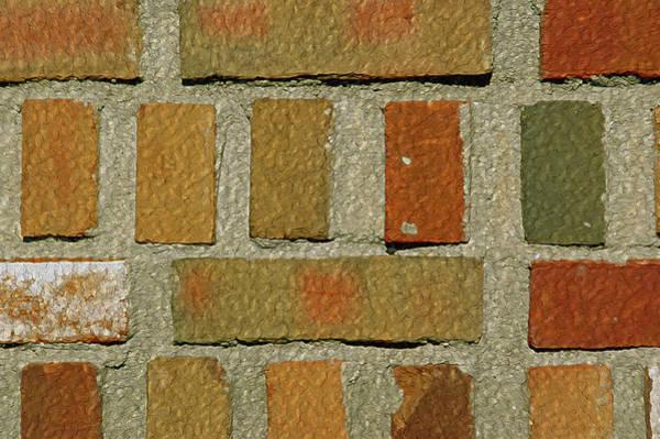 Photograph - Brickabrak by Lynda Lehmann