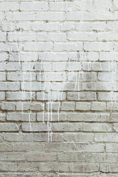 Photograph - Bricks And Paint Dripping Portrait by James BO Insogna
