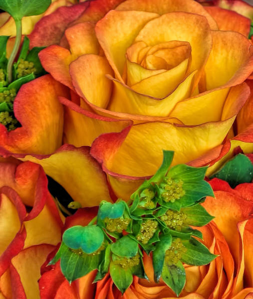 Photograph - Yellow Red Rose Bouquet  by Ginger Wakem
