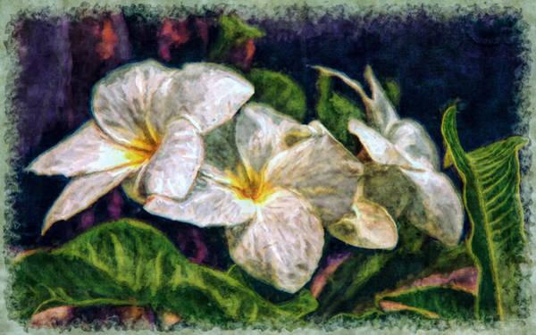 Photograph - Bridal Bouquet by John M Bailey
