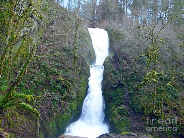 Photograph - Bridal Veil Falls by Charles Robinson