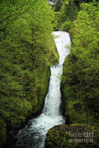 Photograph - Bridal Veil Falls by Jon Burch Photography