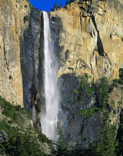 Wall Art - Photograph - Bridal Veil Falls, Yosemite National by David L. Brown