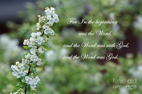 Scripture Photograph - Bridal Wreath Christian Art by Ella Kaye Dickey