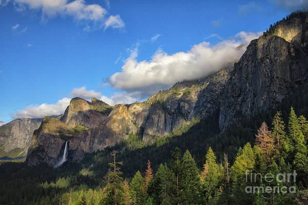 Photograph - Bridalveil Fall by Brandon Bonafede