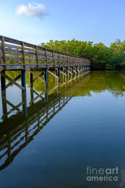 Span Wall Art - Photograph - Bridge Across The Bayou by Edward Fielding
