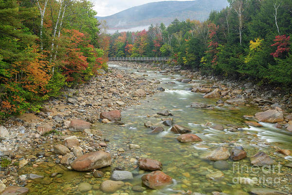 Photograph - East Branch Of The Pemigewasset River, New Hampshire by Erin Paul Donovan