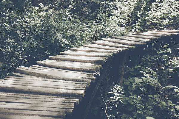 Photograph - Bridge In Forest In Retro Instagram Style Filter by Brandon Bourdages