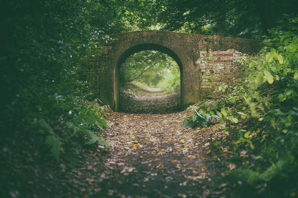 Photograph - Bridge In The Woods by James Billings