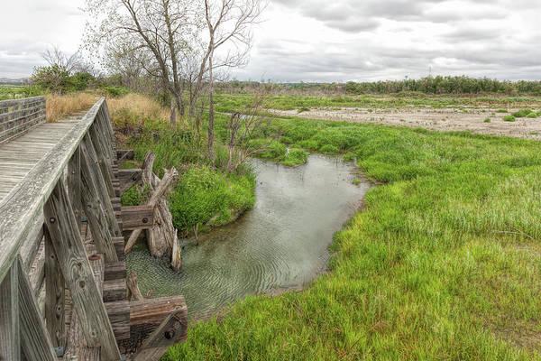 Photograph - Bridge Metamorphosis by John M Bailey