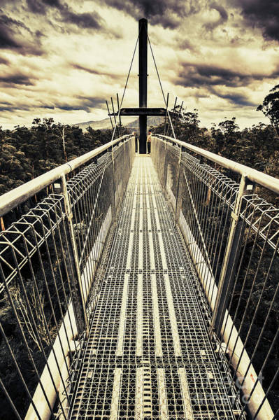 Tree Top Photograph - Bridge Of Suspension  by Jorgo Photography - Wall Art Gallery