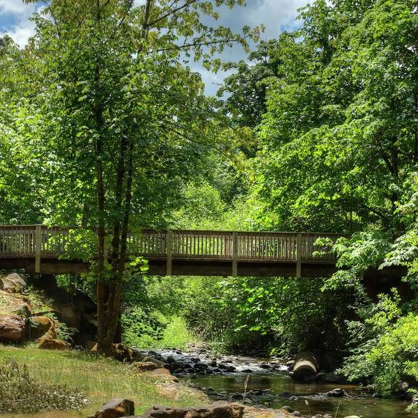 Photograph - Bridge Over North Yamhill River by Jerry Sodorff