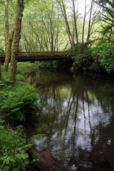 Photograph - Bridge Over Peaceful Waters by Ben Upham III