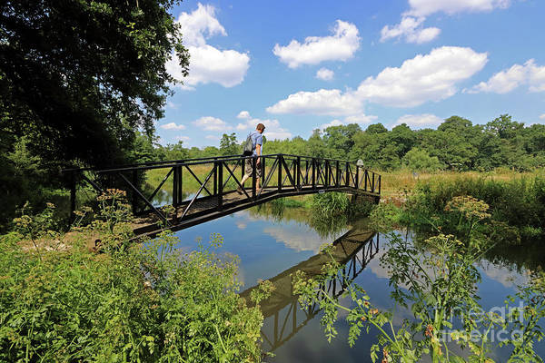 Photograph - Bridge Over The Wey Canal Surrey by Julia Gavin