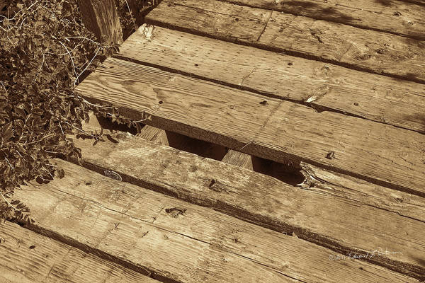 Photograph - Bridge Planking by Edward Peterson