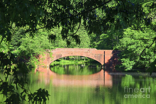 Photograph - Bridge Reflection In The Spring by Jill Lang